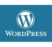 Курс WordPress для профессионалов